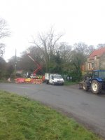 Tree Surgeons Dangerous Tree Emergency Removal Yorkshire