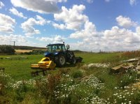 Site Clearance Weeds North Yorkshire